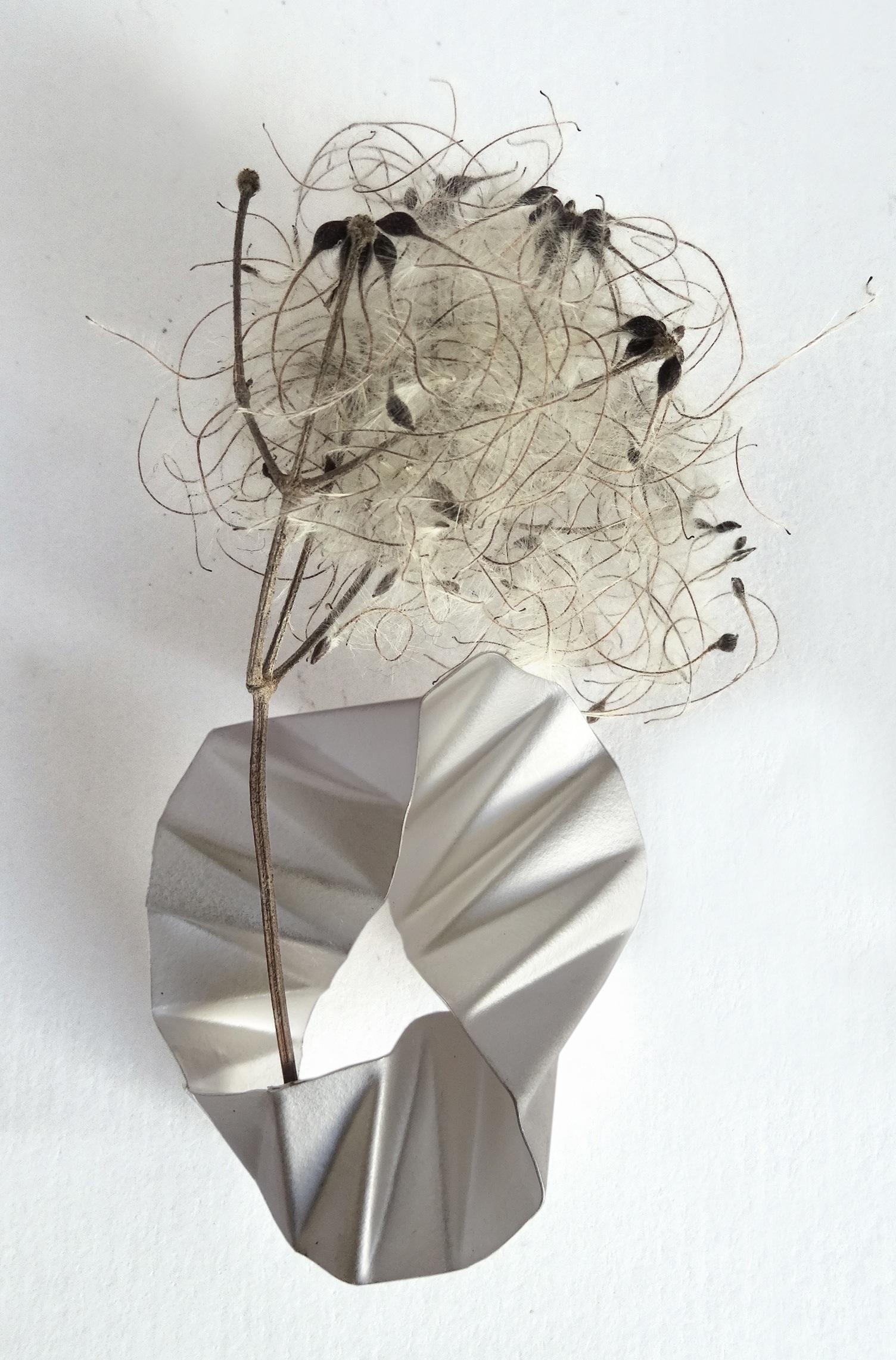 Viki Pearce – Image 2 – 300